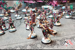 Drukhari army