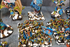 Orcs and Goblins army