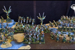 Wood Elves army